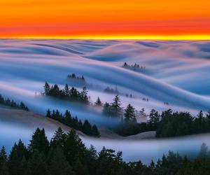 fog amazing sunset image