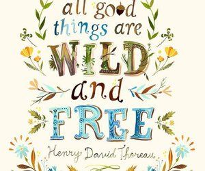 free, wild, and quotes image