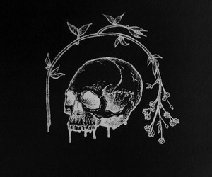 art, dark, and skull image