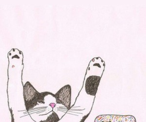 wallpaper and cat image