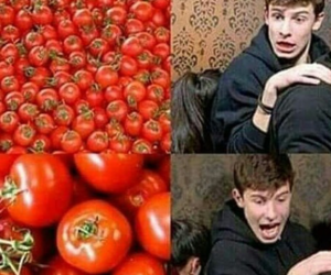 shawn mendes, tomato, and shawn image