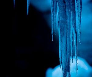 black, blue, and frozen image