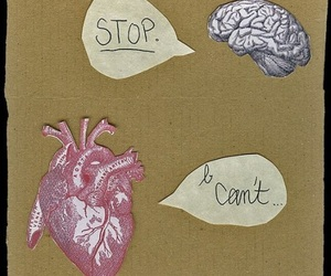 heart, love, and brain image