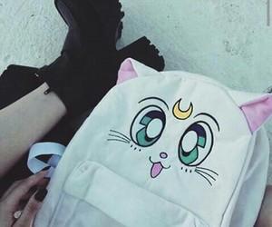 grunge, kawaii, and cat image