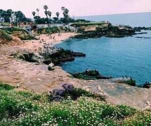 blue, sea, and california image