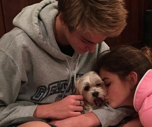 cute, couple, and dog image