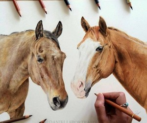 drawings, photography inspiration, and color pencil drawing image