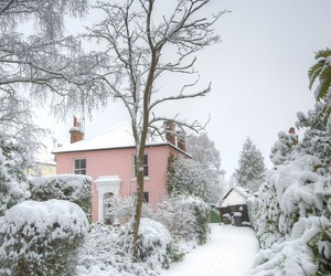 pink, travel, and winter image