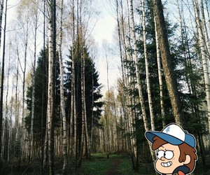 series, dipper, and gravity falls image