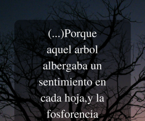 frases, quotes, and poemas image