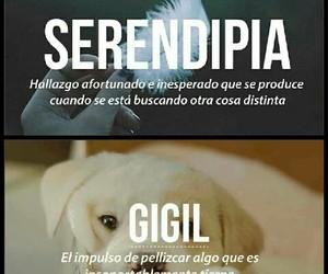 vida, frases español, and ternura image