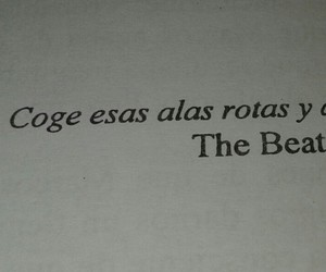 fly, frases, and the beatles image