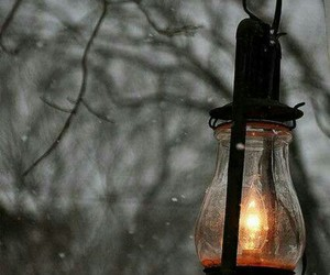 fall, lantern, and winter image