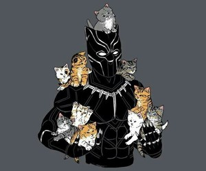 black panther, cats, and Marvel image