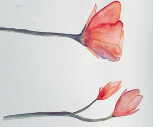 aquarell and flowers image