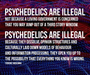 drugs, psychedelic, and quote image
