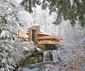 frank lloyd wright, house, and nature image