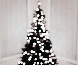 lights, xmas, and tree image