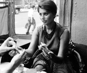 b&w, cafe, and sophia loren image