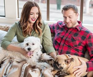 couple, dogs, and family image
