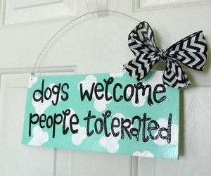 dogs, door, and funny image