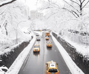 winter and cabs image