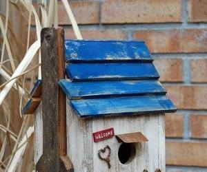 bird house, fence, and blue image