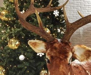 card, christmas, and christmas lights image