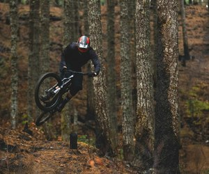 bike, forest, and black image