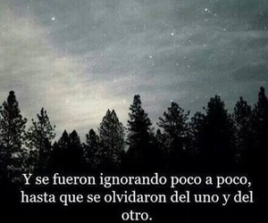 olvido, love, and frases image