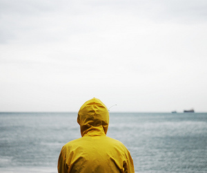 yellow, sea, and photography image