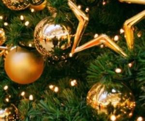 christmas and star image