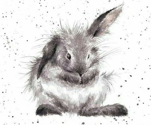 art, rabbit, and cute image