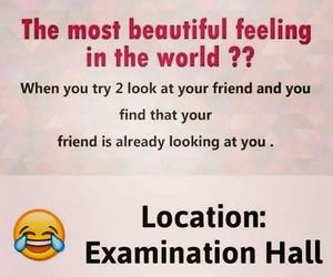 exam, funny, and school image