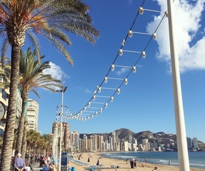 beach, palmtree, and sun image