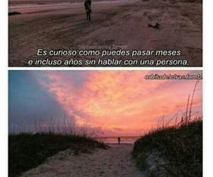 curioso, frases, and meses image