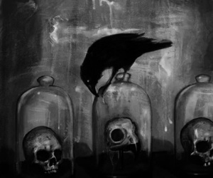 black and white, crow, and skull image