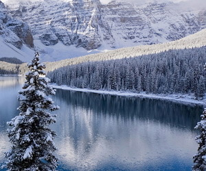 snow, winter, and mountains image