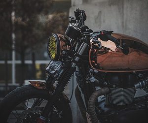 motorbike, motorcycle, and triumph image