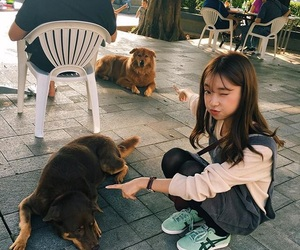asian, beautiful, and dogs image