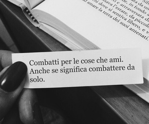 fight, love, and frasi image