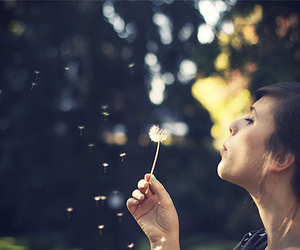 blow, dandelion, and girl image
