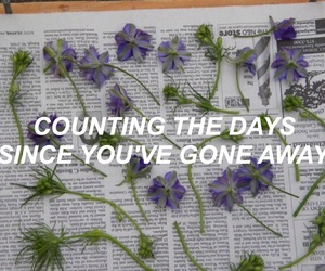 aesthetic, Lyrics, and tumblr image