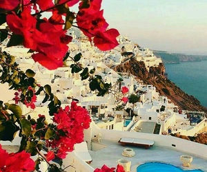 travel, flowers, and Greece image