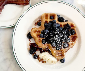 texas state waffle and brunch in austin image