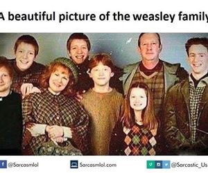 funny, harry potter, and ed sheeran image