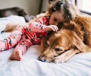 dog, animal, and kids image