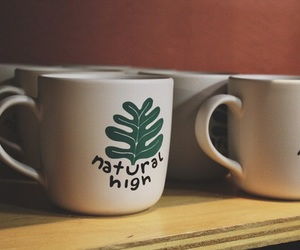 biology, nature, and coffee image
