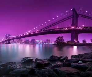 purple, violet, and 💜 image