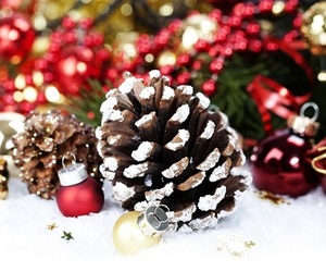 christmas, holiday, and decorations image